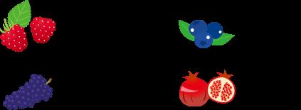 ラズベリー一粒丸ごと ブルーベリー一粒丸ごと ぶどう一粒丸ごと ザクロ一粒丸ごと